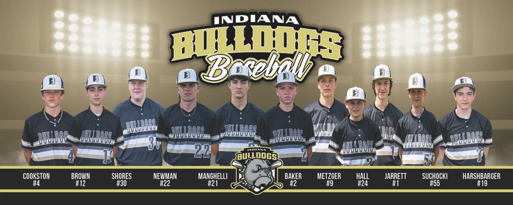 2020 Bulldogs Baseball 14U